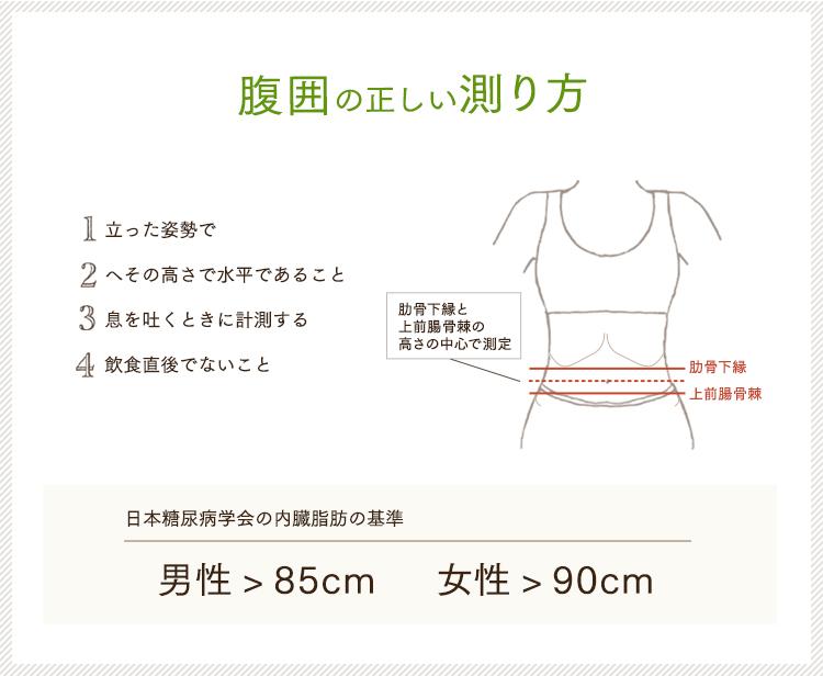 腹囲の正しい測り方